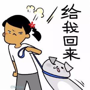 外贸企业<a href=https://www.wxyuannuo.com/ target=_blank class=infotextkey>网站建设</a>过程中经常踩的坑,看看你有没有中招!